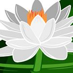 ロゴ:APNIC 50